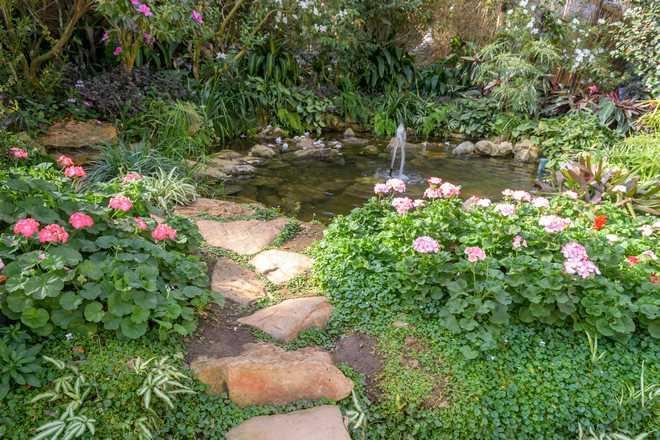 ruisseau artificiel au jardin
